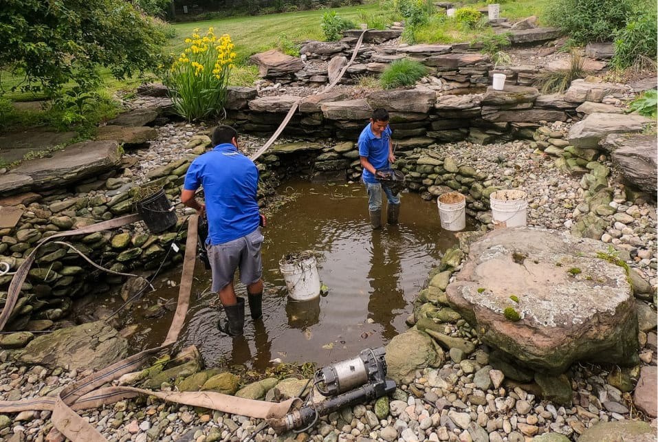 Spring Pond Clean-Out